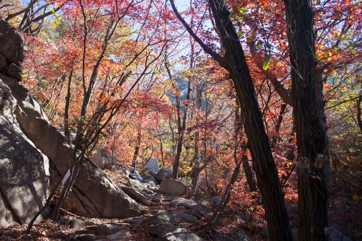 korea-hike-autumn